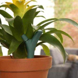 capteur pour plante connecté Flower Power Parrot