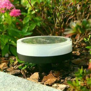 lampe playbulb garden plantee dans un jardin