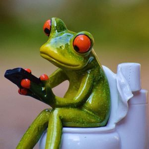 grenouille jouant sur smartphone aux wc