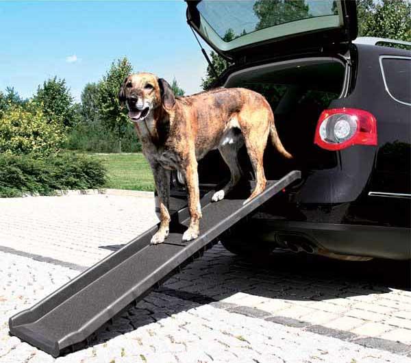 chien debout sur la rampe d'accès voiture pliable Petwalk de Trixie