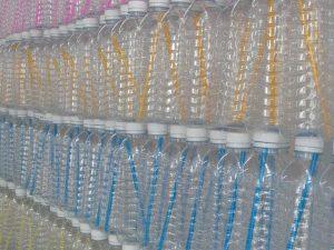 bouteilles eau en plastique
